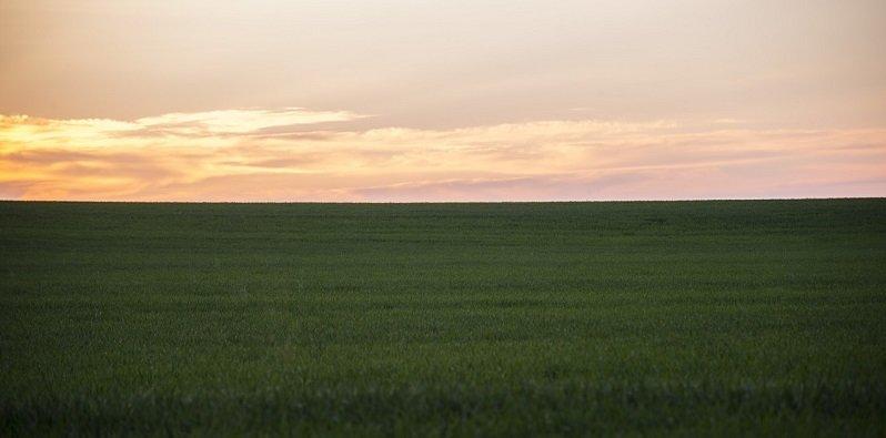 סוגי קרקעות - באיזה קרקע להשקיע?