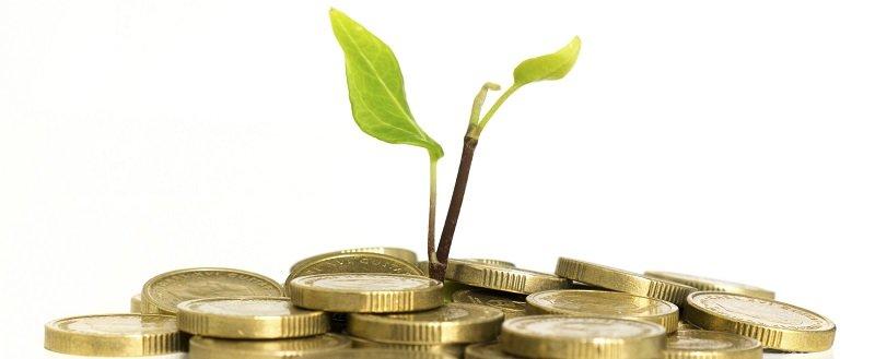 השקעה בטוחה - לתת לכסף לעבוד