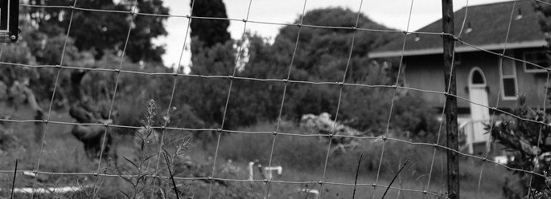 קרקע לבניה - קרקע מופשרת לבניה