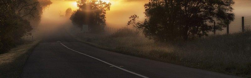 מכירת קרקעות - כביש גישה לחווה